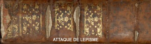 lepisme