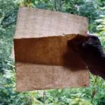 Du vrai papier chiffon - vergé et vélin