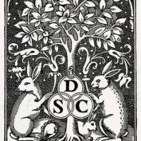 lapins-simon-de-colines3
