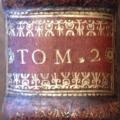 1691-tomaison