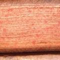 1691-tranche-jaspee