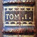 1737-tomaison