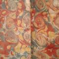 1770-garde-coquilles